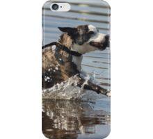 Dog playing 1 iPhone Case/Skin