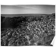 The Pentagon Rocks Black & White Poster