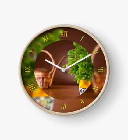 Ocimum basil plant grow Clock