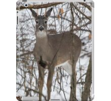 Curious Spike Buck iPad Case/Skin