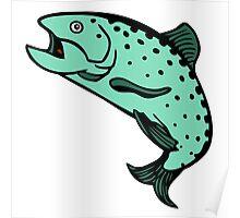 truite saumon Salmon trout Poster