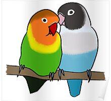 Snuggly Lovebirds Poster