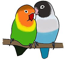 Snuggly Lovebirds Photographic Print