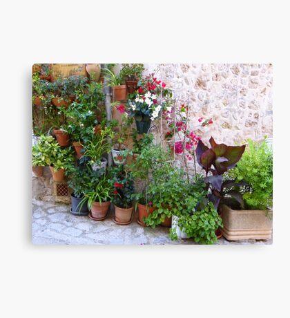 The Corner Plants.....................................Majorca Canvas Print