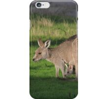 Eastern Grey Kangaroo and Joey iPhone Case/Skin