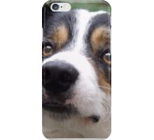 The Charm of Laddie. iPhone Case/Skin