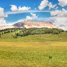 Colorado Panoramic by Candy Gemmill