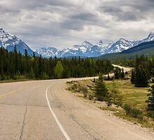 Icefields Parkway 2 by MichaelJP