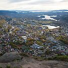 Looking south from Ulriken by Algot Kristoffer Peterson