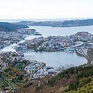 View of Bergen by Algot Kristoffer Peterson