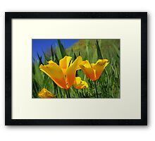 Bright Summer ORANGE Poppy Flowers Poppies Art Framed Print