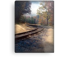 *Around the Bend Metal Print