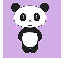 Chibi Panda Photographic Print