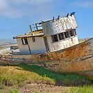 Beached - Point Reyes Tug by mrthink