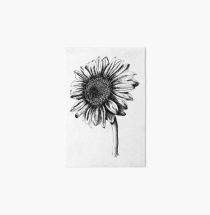 Artist Sketch Sunflower drawing in black and white Art Board