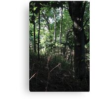 All Time Canvas Print