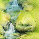 Woodland stream by Sarah Trett