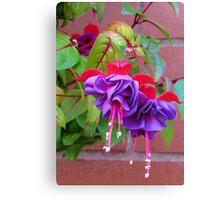 The Ballerinas - Dancing Fuchsia Belles Canvas Print