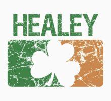 Healey Surname Irish by surnames