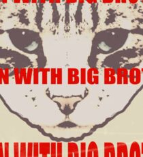 Orwellian Cat: Down With Big Brother Sticker