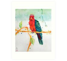 The Parrot King Art Print