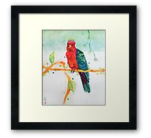 The Parrot King Framed Print