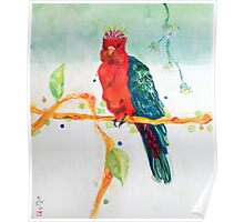 The Parrot King Poster
