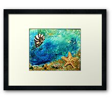 Sea star and nautilus Framed Print