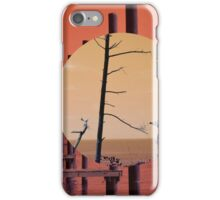 Beach and Bay iPhone Case/Skin