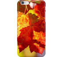 Autumn's Maple II iPhone Case/Skin