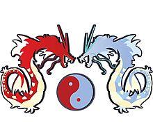 ying-yang-a-dos Photographic Print