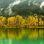 Reflections In Moose Lake by Jim Stiles