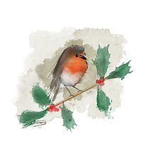 Christmas Robin Photographic Print