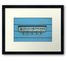 Bikinis And Trunks Hanger Framed Print