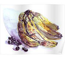 Fruit Study Poster