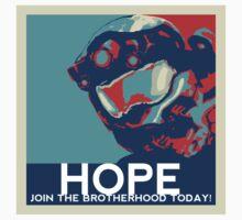 "BLUE ""Hope"" Propaganda by FCRevolutions"