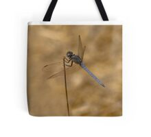 Male scarce chaser reversed Tote Bag