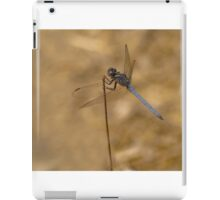 Male scarce chaser reversed iPad Case/Skin