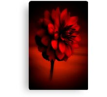 The Beauty of red Canvas Print