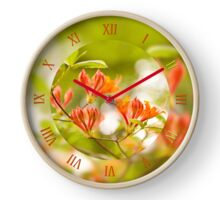 Rhododendron called Azalea flowers Clock