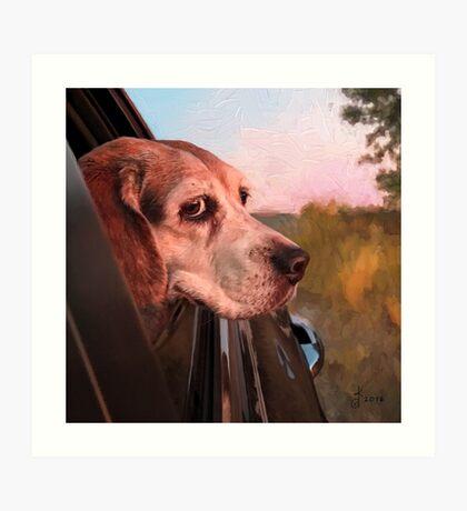 """""""Maggie Mae's Car Ride"""" Art Print"""
