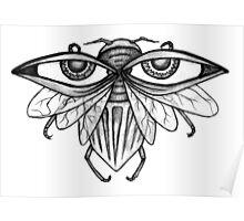 Eyebug Poster