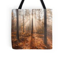 Foggy morning autumn forest Tote Bag