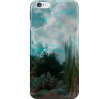 Evening looking at the heavens... iPhone Case/Skin