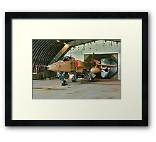 Last Day of the Jaguar Framed Print