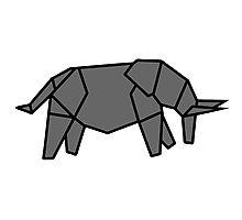 origami éléphant elephant Photographic Print