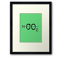 Cut CO2 Framed Print