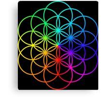 Coldplay 2 Canvas Print
