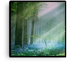 Darling buds of May Canvas Print