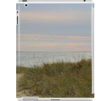 Afternoon setting sun at the beach in autumn iPad Case/Skin